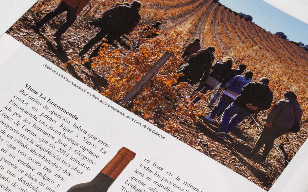 The new generation of Valdepeñas wines