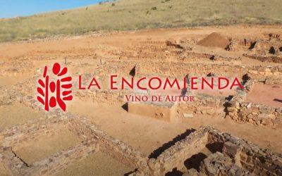 Wine and culture with Vinos La Encomienda